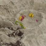W Kunstwerke im Sand März14 3
