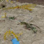 W Kunstwerke im Sand März14 7